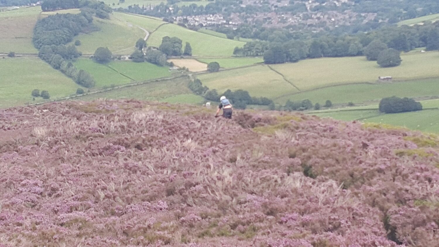 On our way back down. Pete snaking down though the heather.