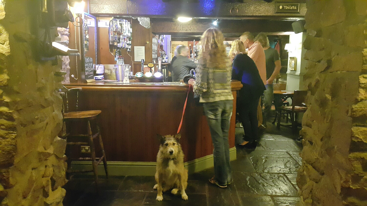 After arriving at Matlock and having Tea, Winner, Alices Mum took us to the local for a drink.  Murtle and Keela the dog where also allowed in the pub!