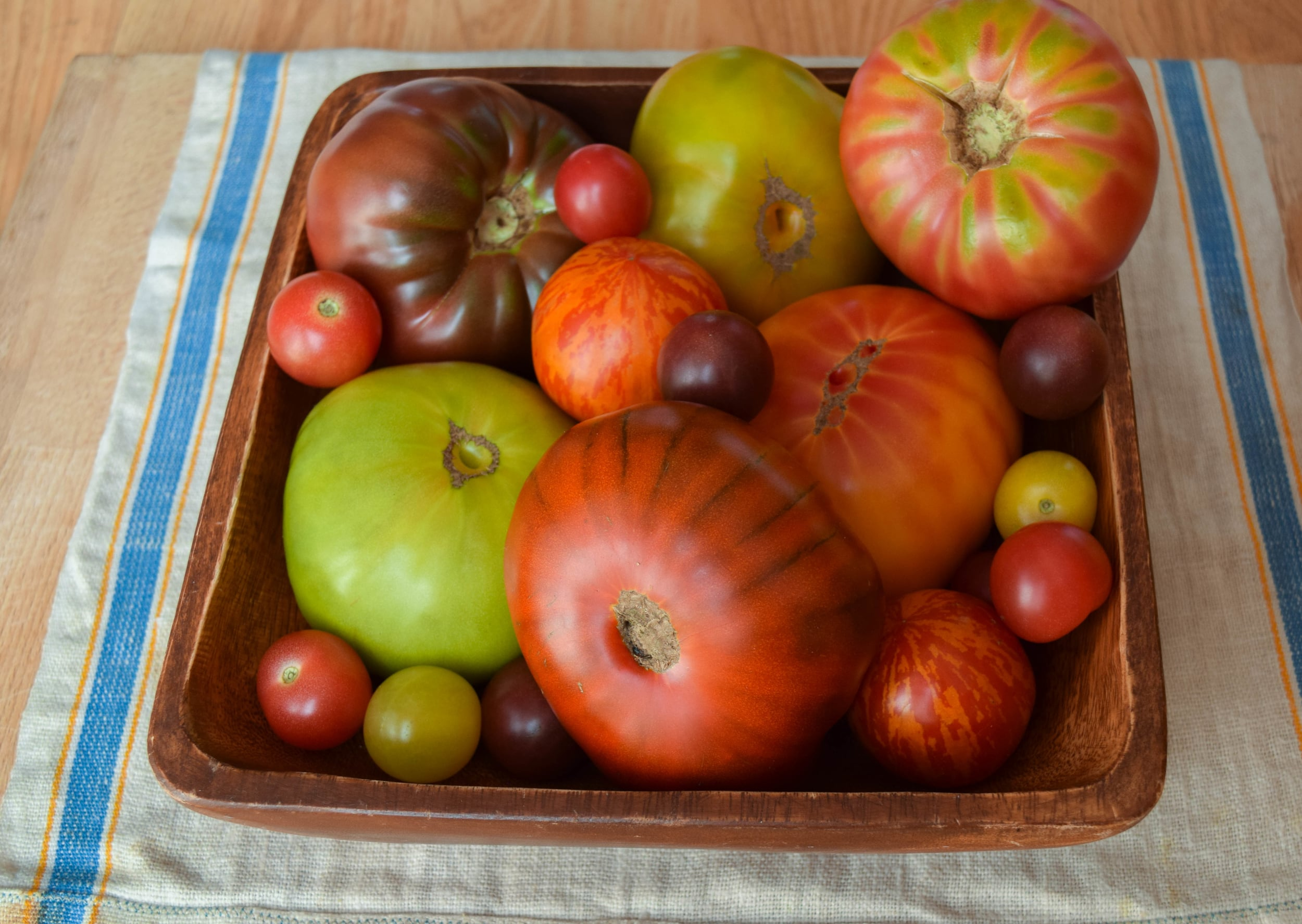 assorted tomatoes.jpg