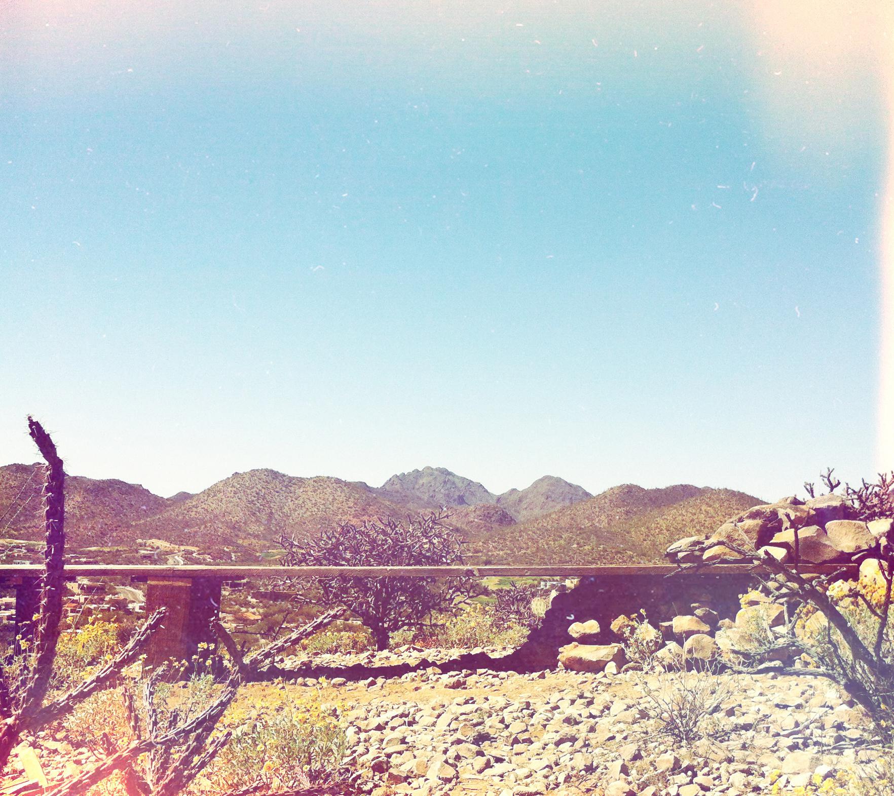 DesertTable-AliBeletic.jpg