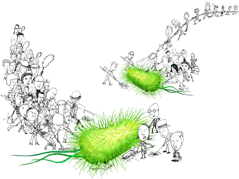 020901bacteria_final copy.jpg