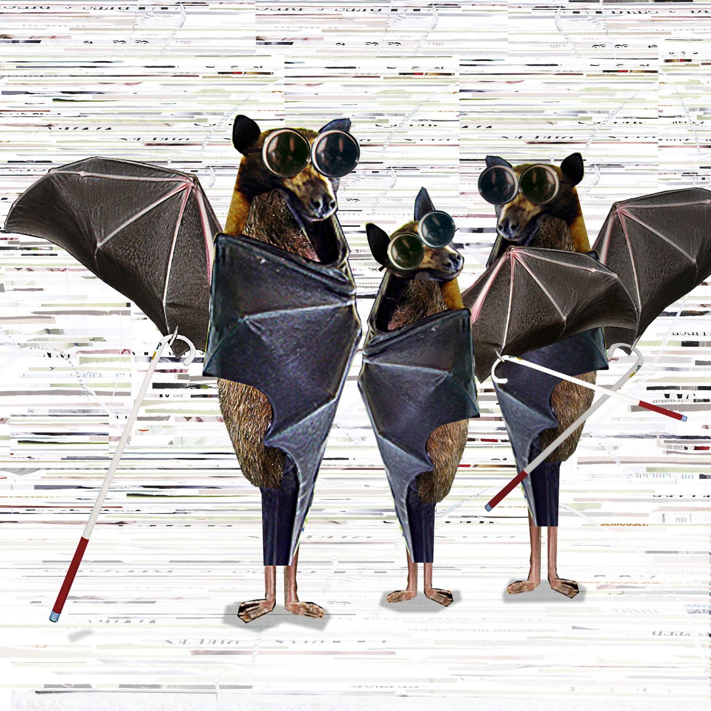 0012blind bats copy.jpg