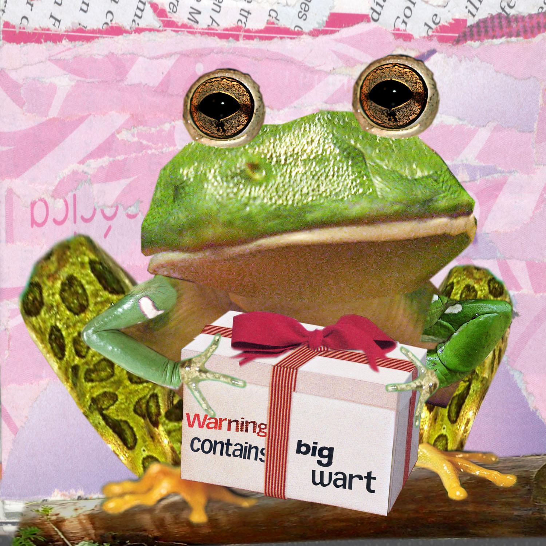 0012frog copy.jpg