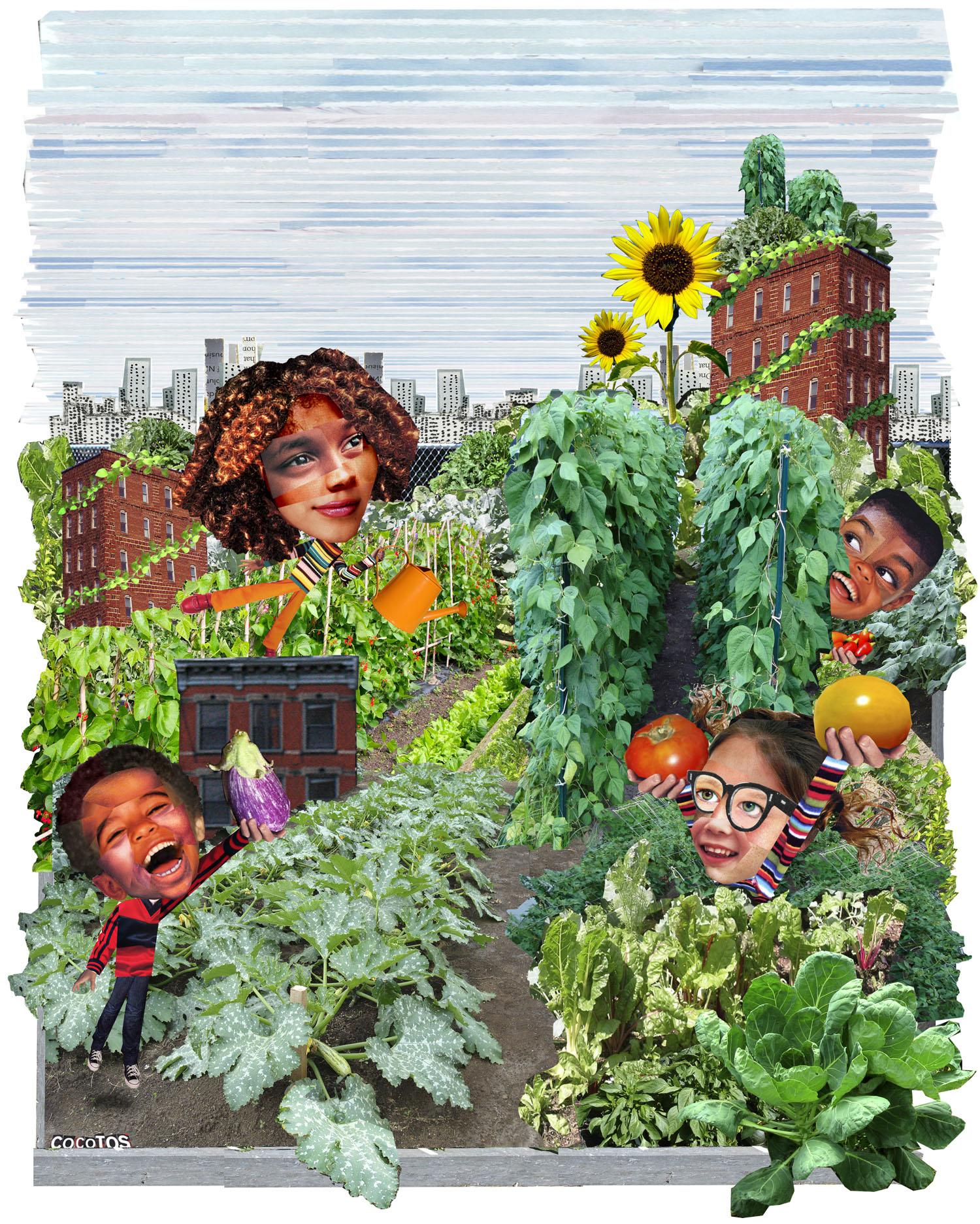 051101urban garden copy.jpg