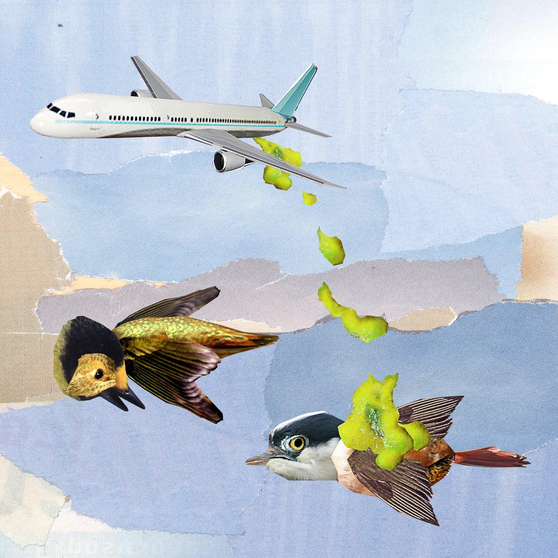 airplane goop-adj hi pass copy.jpg