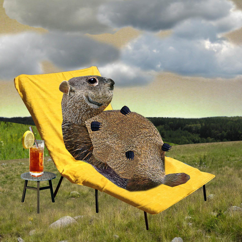 groundhog-adj hi pass copy.jpg