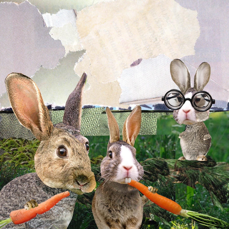 rabbits2-no bubbles copy.jpg