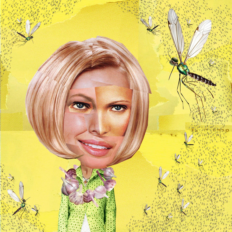 moquito copy.jpg