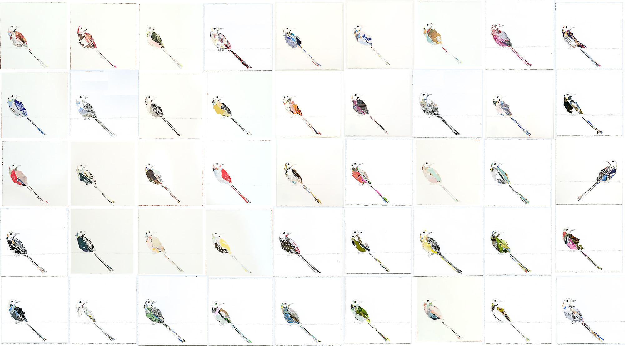 45flycatchers.jpg