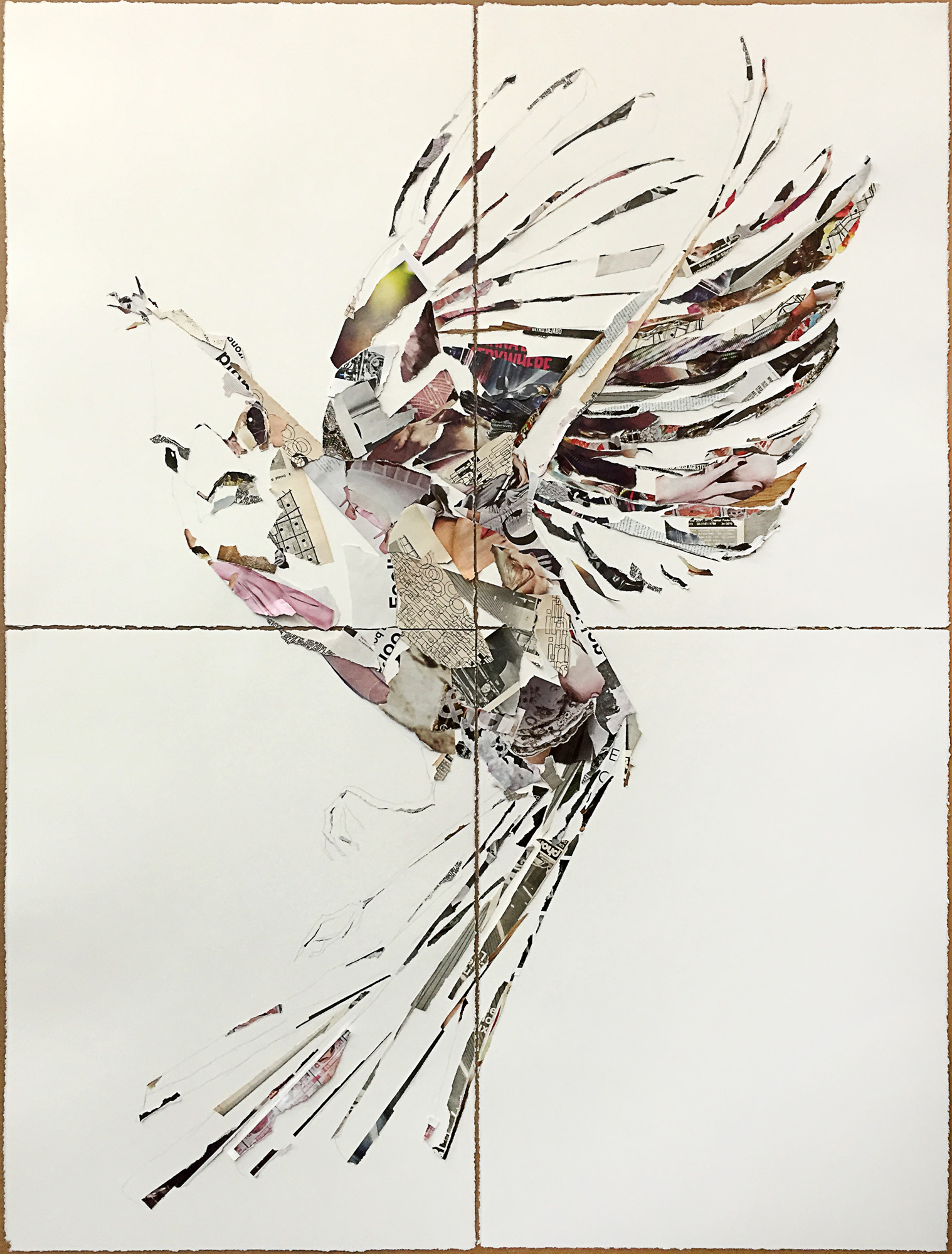 bigbird-of-flight.jpg