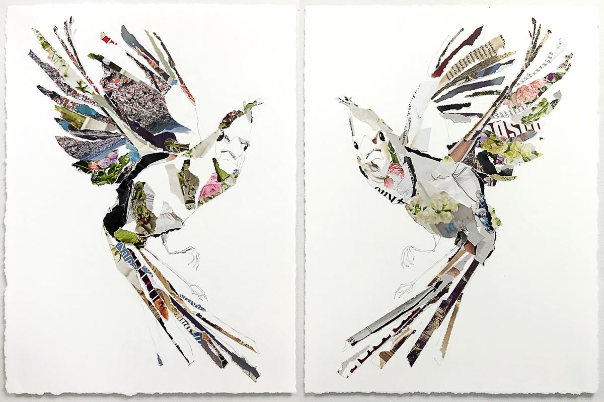 nafpaktos-birds.jpg