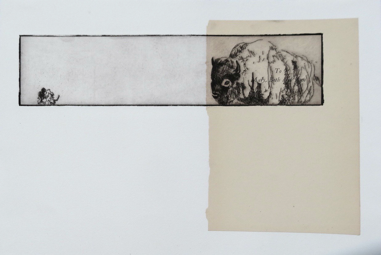 Bison III  etching and chine collé 14 x 10 inches 2012