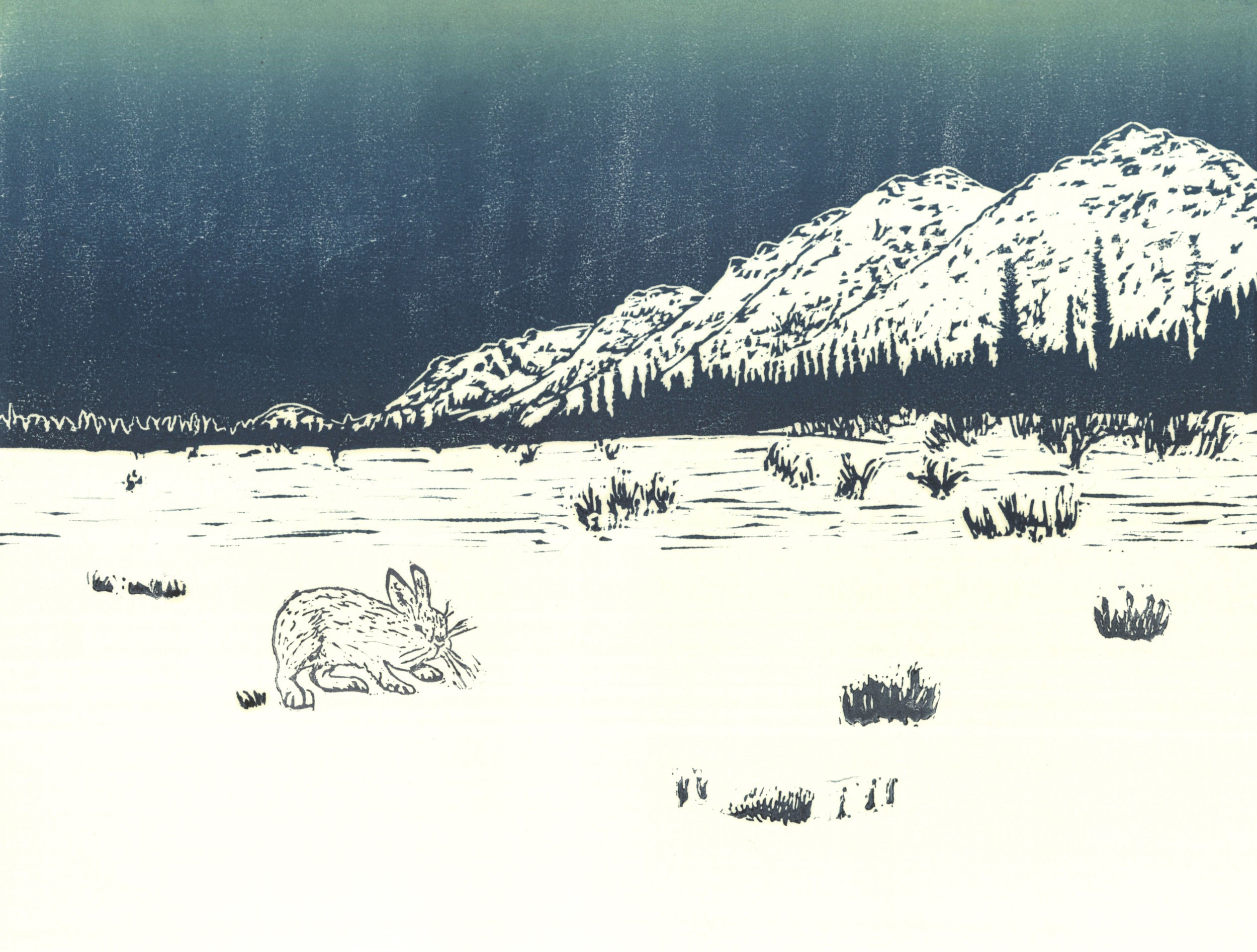 Hare and Koyukuk Valley  woodcut and linocut 12 x 9 inches 2016