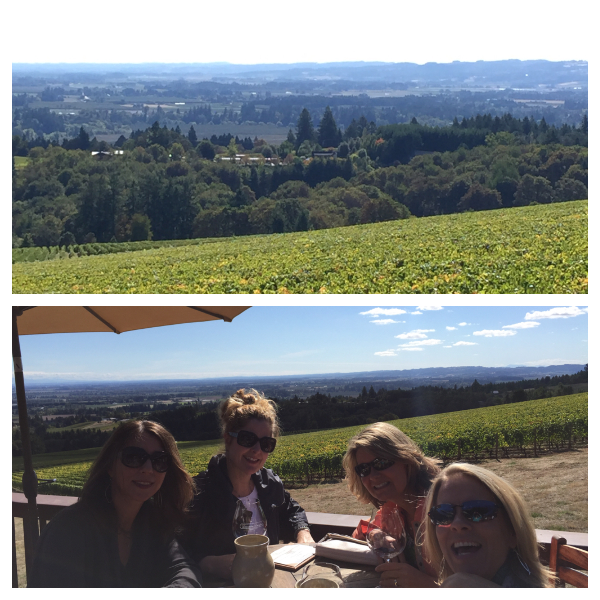 """Domaine Drouhin ; """"French soul in the Oregon soil."""""""