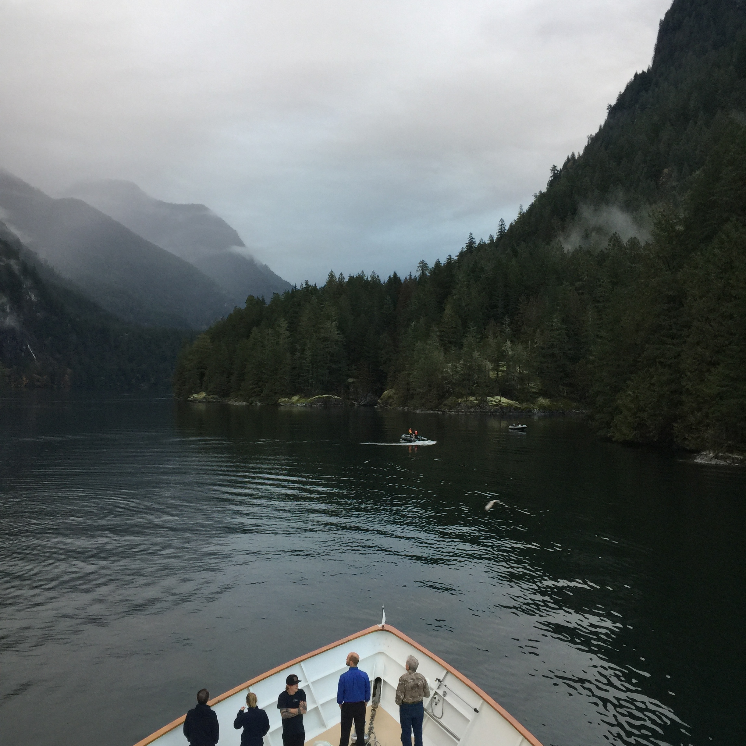 The Captain and Crew kept us safe while navigating the tides and narrow entrance to the Princess Louisa Inlet.