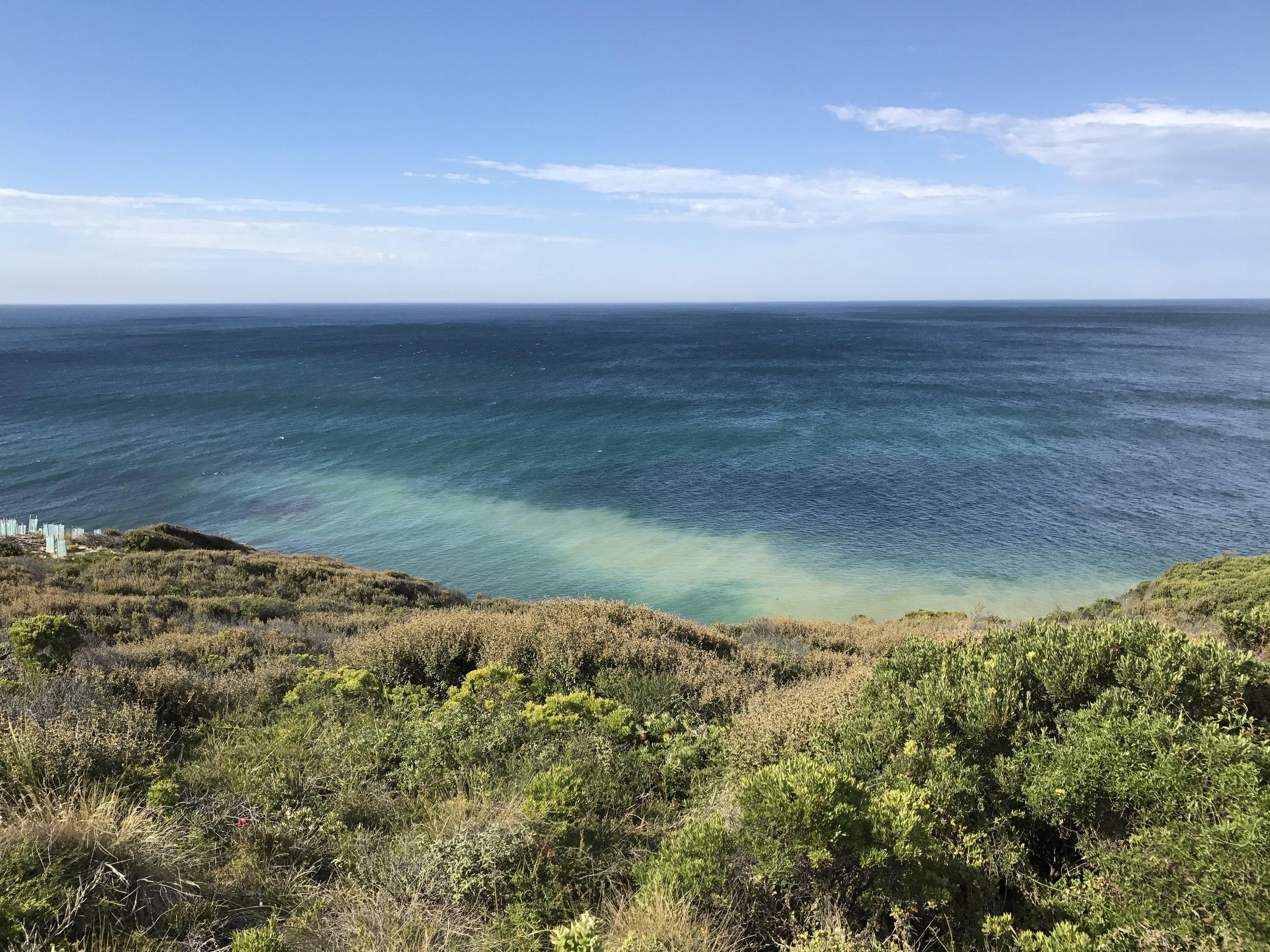 Gorgeous Great Ocean Road