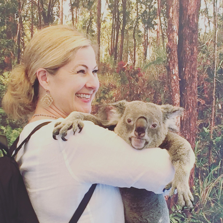 Meet Koalas