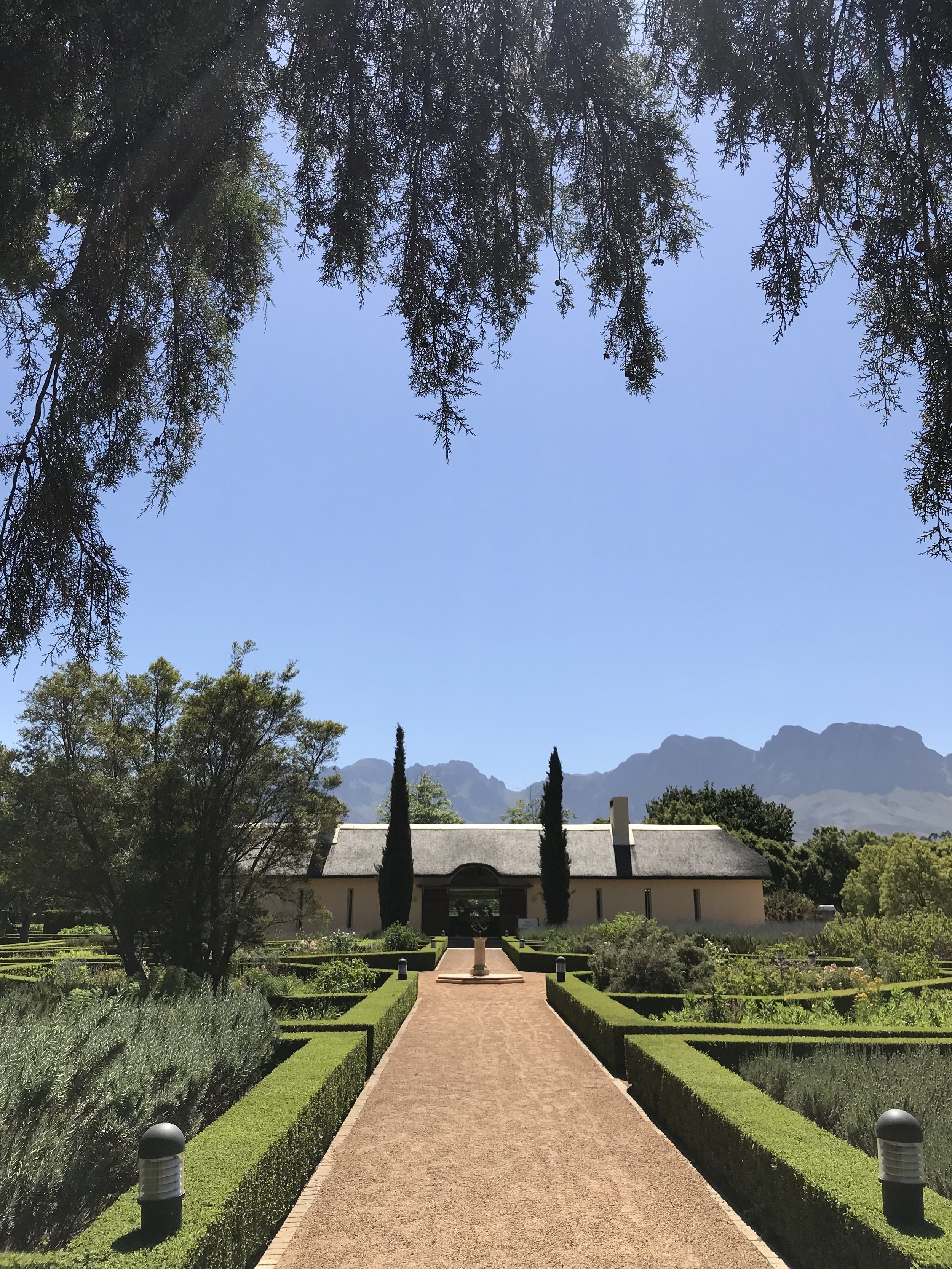 Explore South Africa's wine country