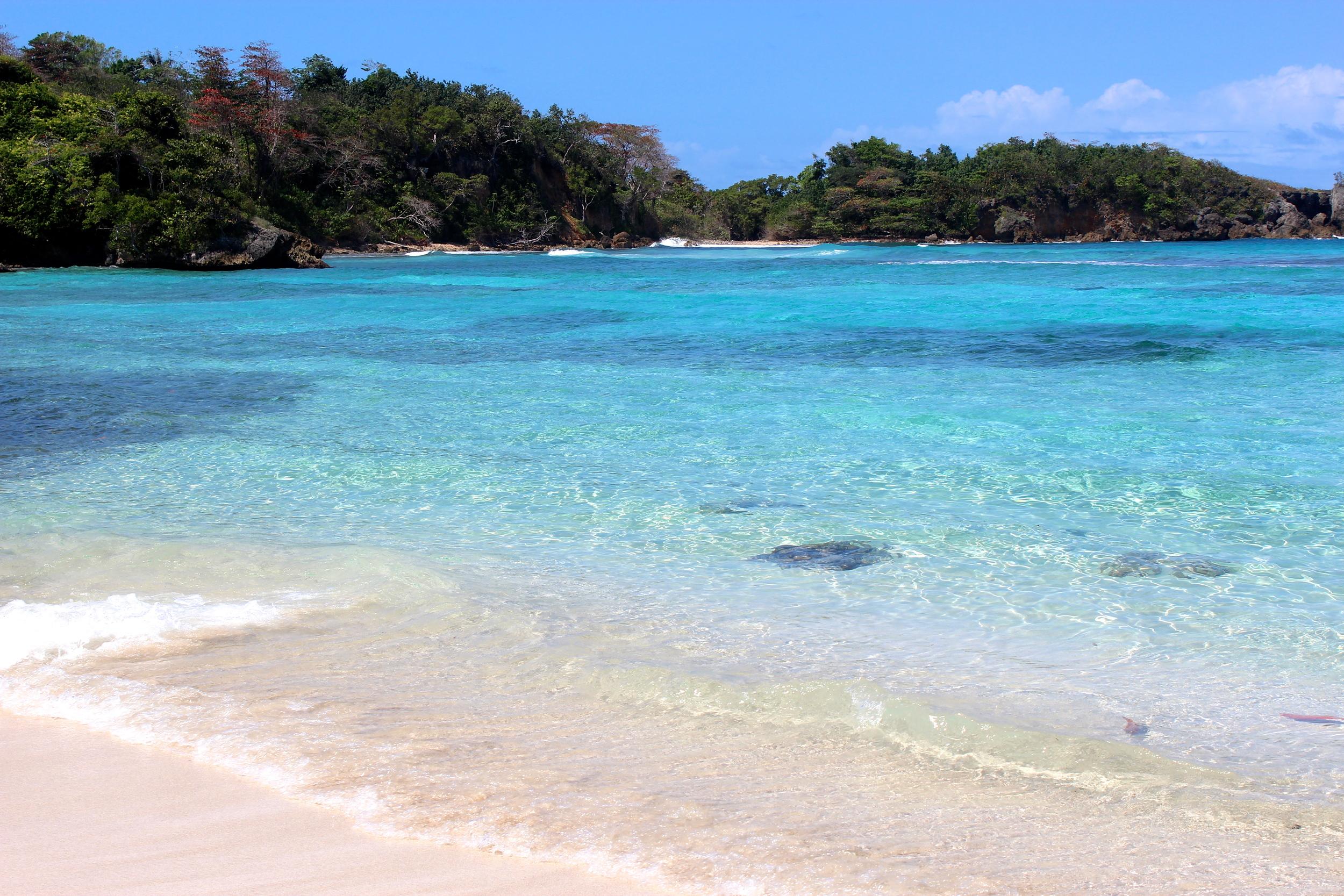 winnifred shore