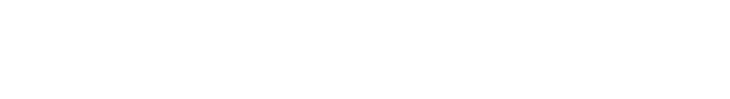 transparent web banner.png