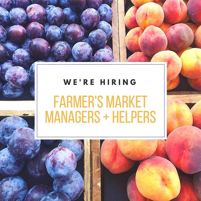 Seattle friends! Wanna work at the farmers market this summer? Let's chat! #collinsfamilyorchards #seattle #seattlefarmersmarket