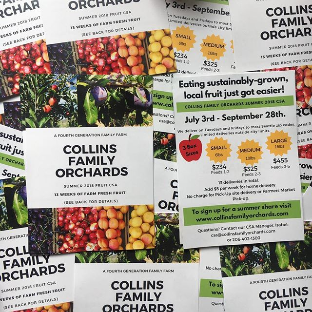 Seattle friends! Sign up for the @collinsfamilyorchards fruit CSA! Click the link in the Collins Family bio for more info/to sign up. You can even pick up your box at my apartment this year! 💁🏽‍♀️🍎 If you do wanna sign up, text/dm me for a promo code! #collinsfamilyorchards
