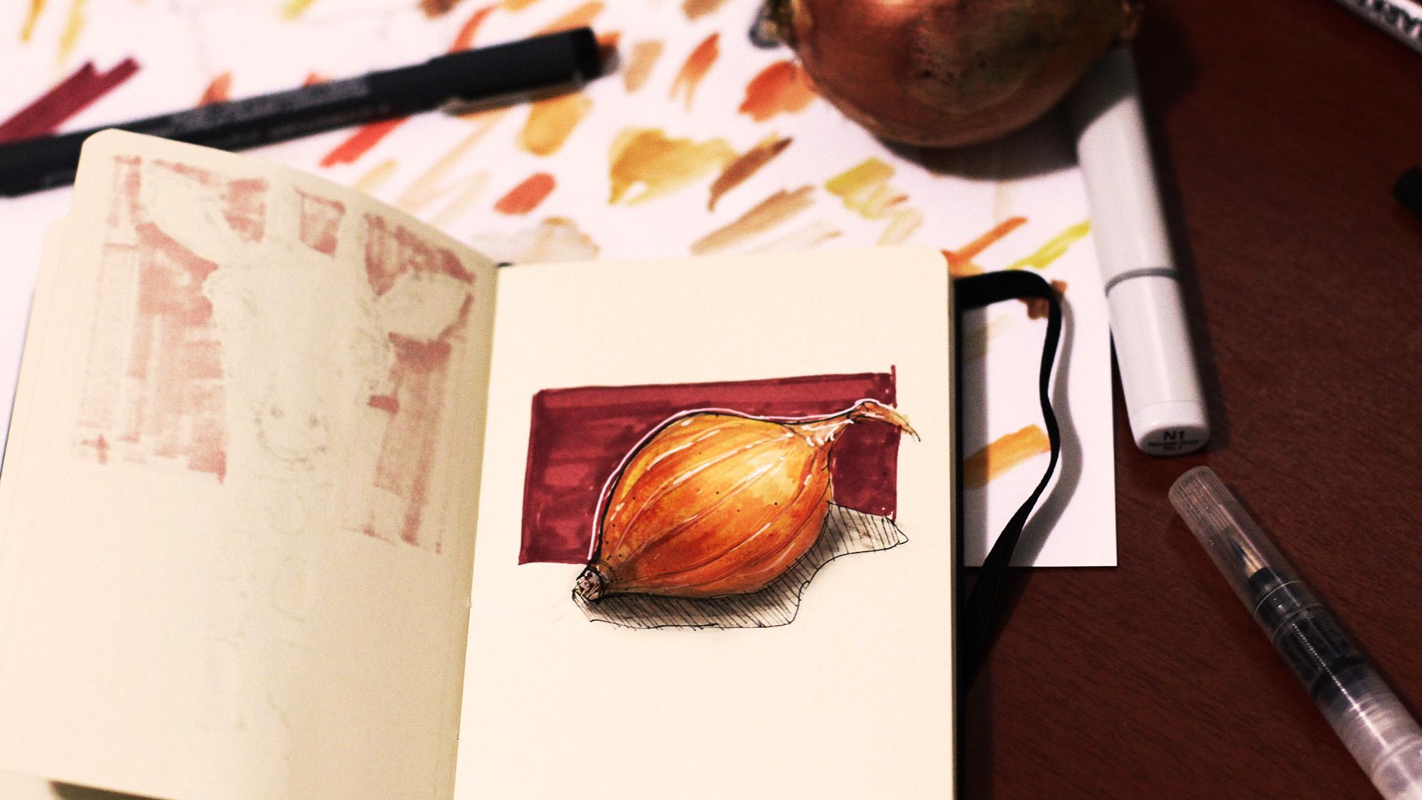 Onion Sketch