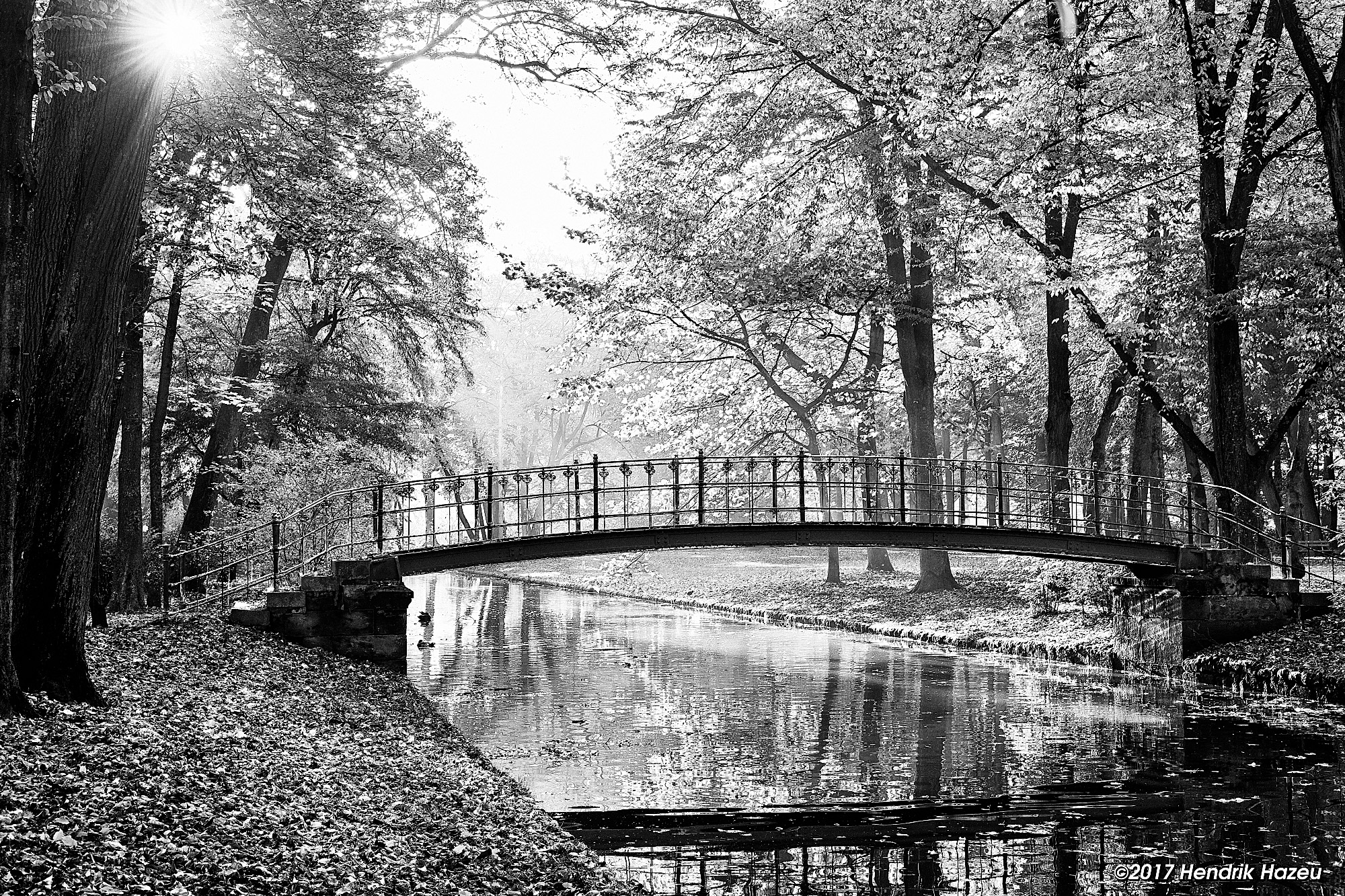 Bridge in the Park, with XF 35/2 on X-Pro2, Capture One 10 with modified BW-15 Style