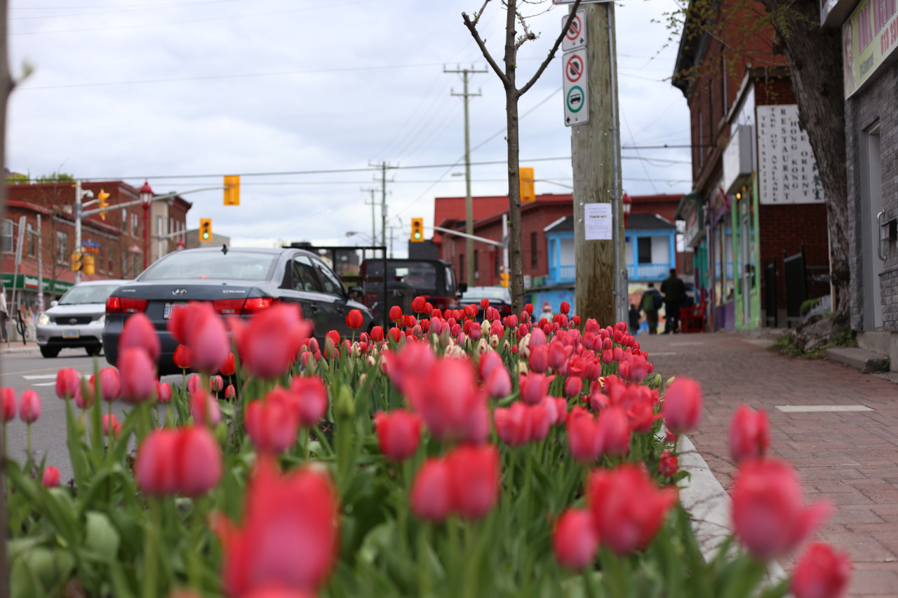 ottawa landscape photographer mailyne briggs.jpg