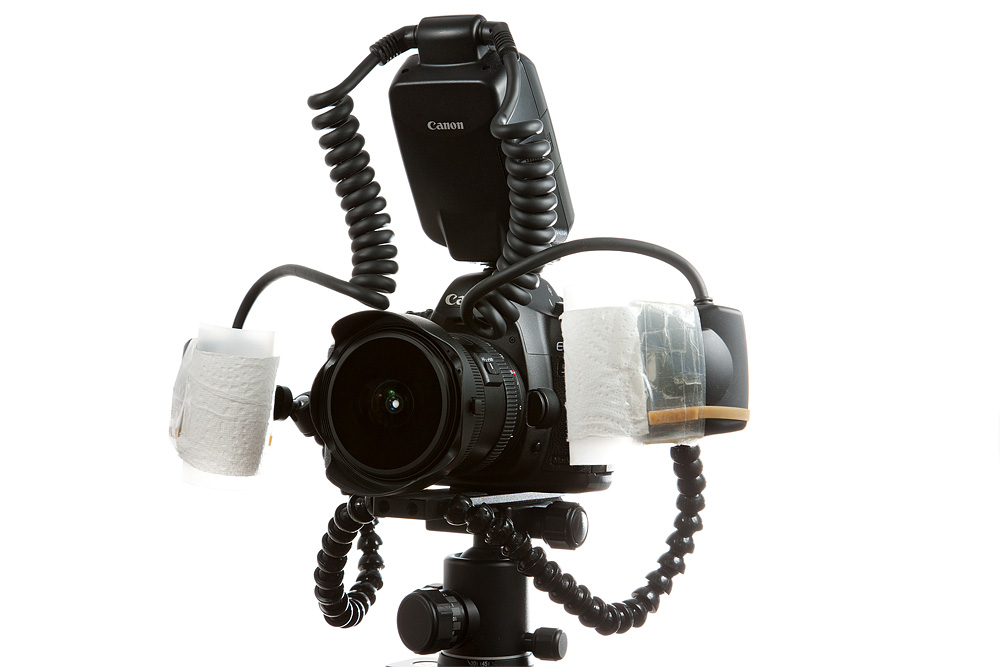 Fisheye lens with macro twin lite and diffusers