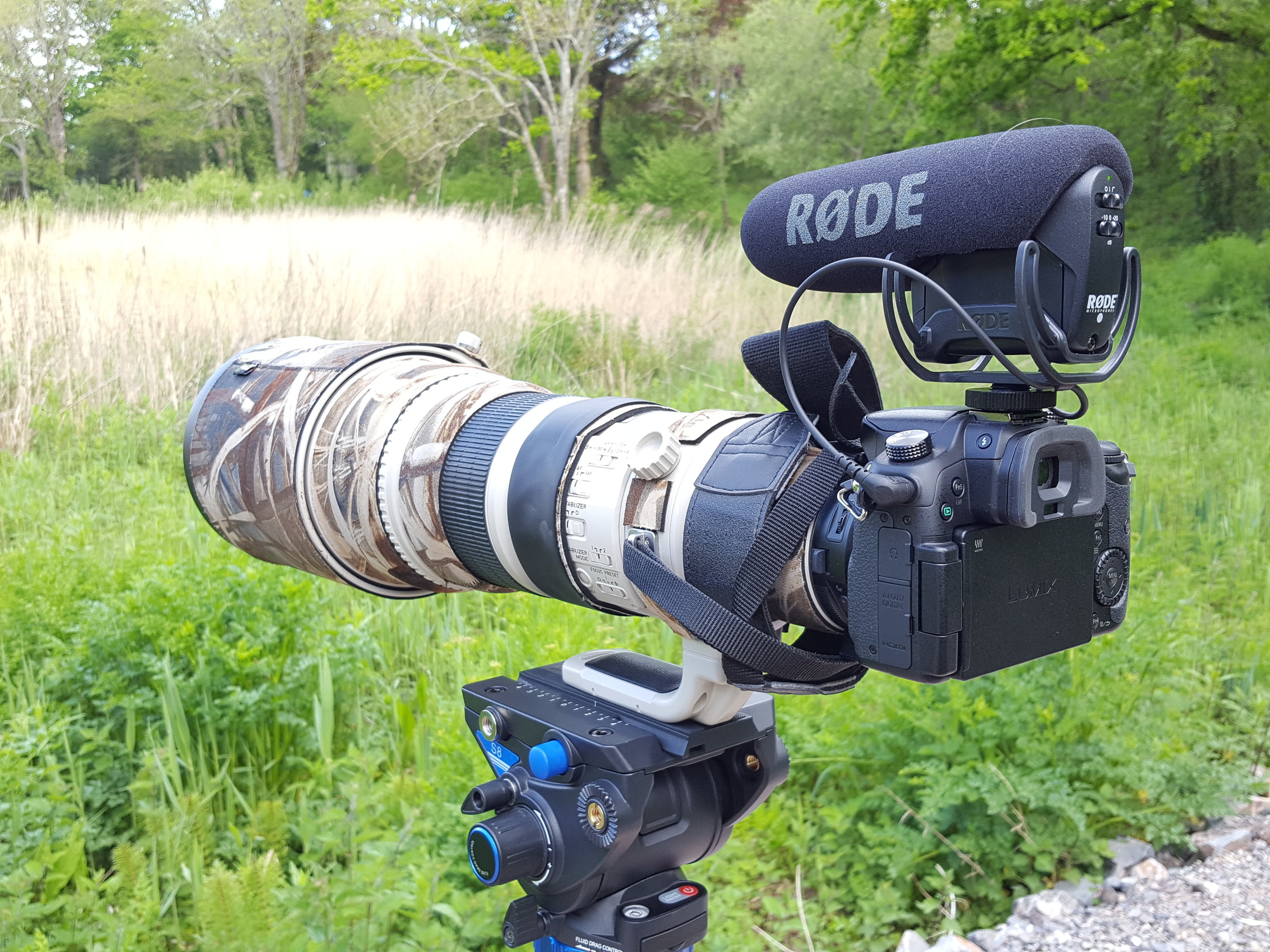 GH4 and canon 500mm