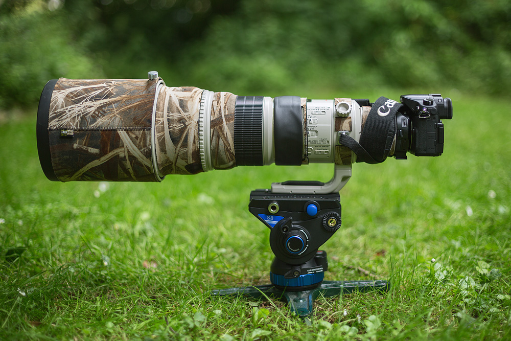 Panasonic Gh4 with Canon 500mm ƒ4 IS on Benro S8 video head