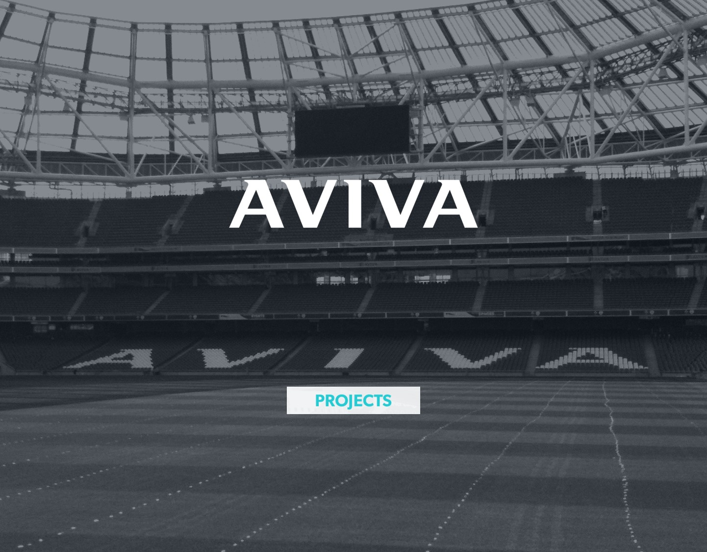 DEFINING THE BUSINESS CASE FOR IRELAND'S LARGEST VENUE NAMING INVESTMENT - AVIVA STADIUM