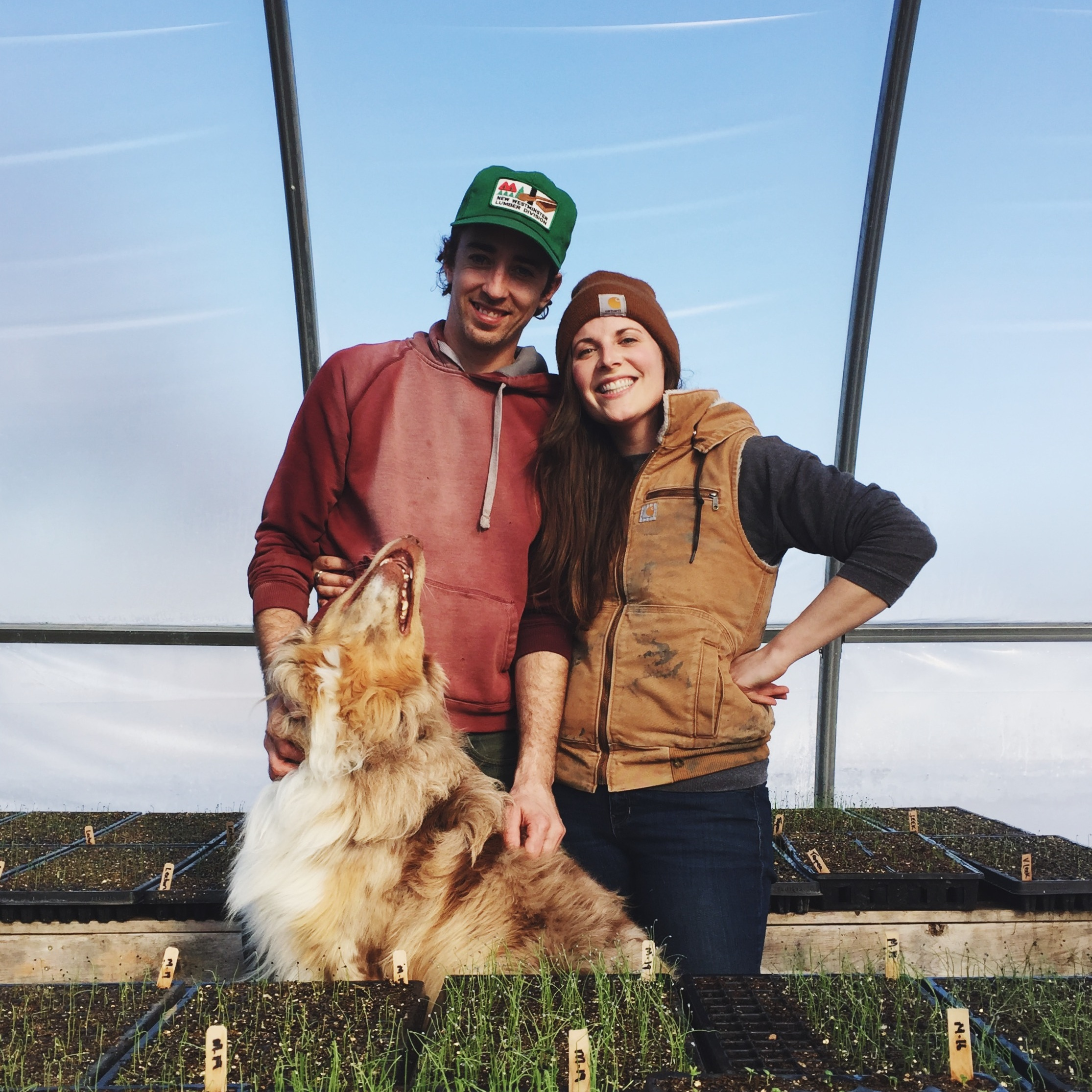 about - Located near Elie, Manitoba on Treaty 1 Territory, Hearts & Roots is a small-scale, certified organic fruit and vegetable farm producing high-quality, hand-tended produce for its community.