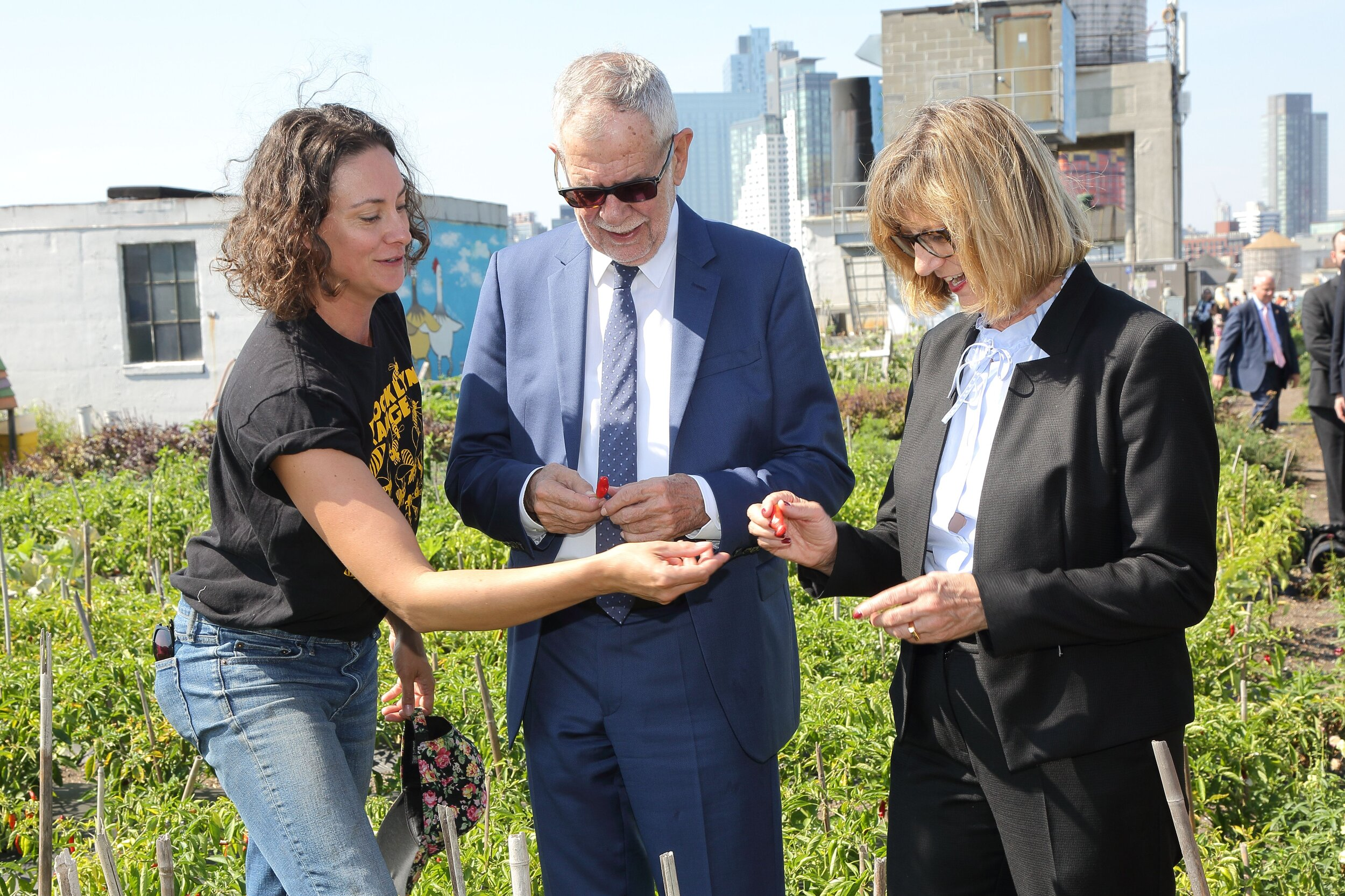 Federal President Alexander Van der Bellen and Federal Minister for the Environment Maria Patek visit a rooftop garden in Brooklyn, NY.    Photo: Anton Brookes