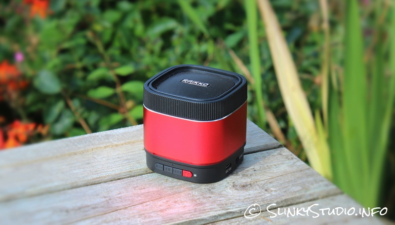 Raikko Party X1 Speaker.jpg