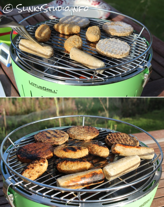 LotusGrill Grilling Barbecuing Results.jpg