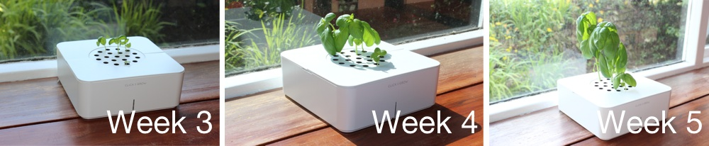 Click & Grow Smart Flowerpot Week 3, 4 & 5.jpg