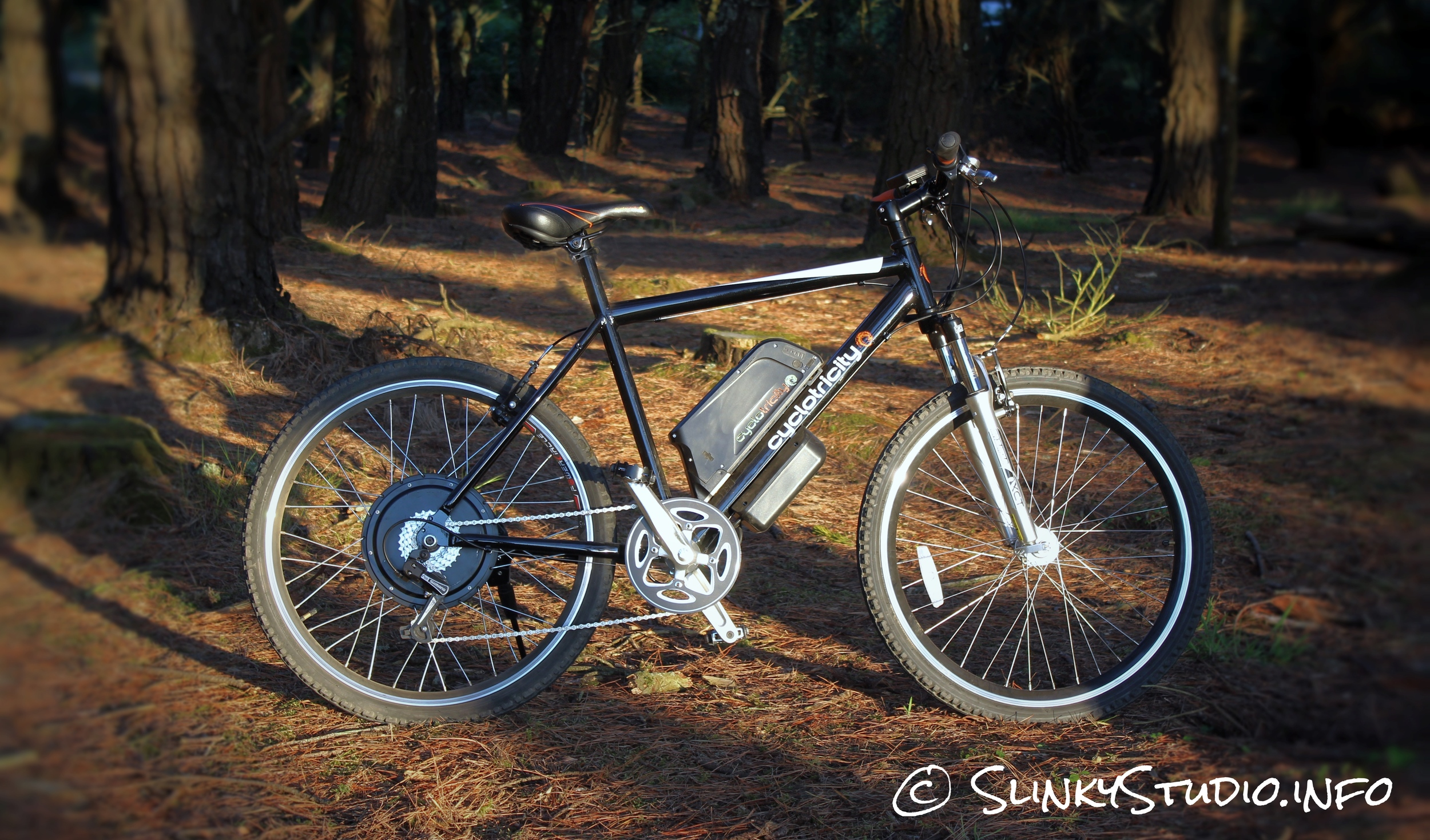Cyclotricity Revolver 500W eBike Standing in Woods
