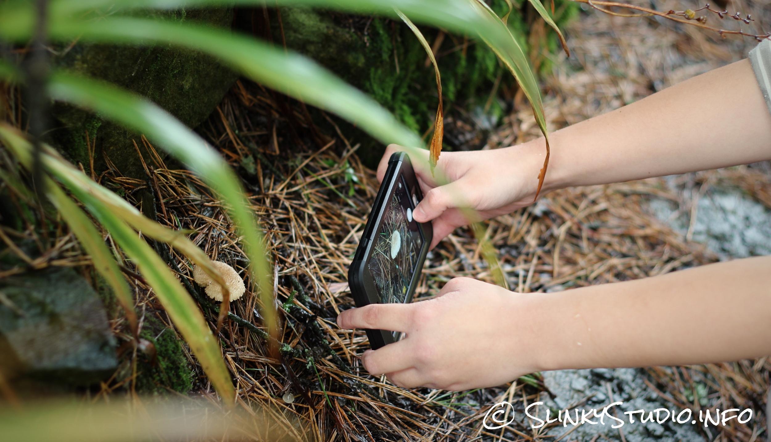LifeProof NÜÜD Case for iPhone 6 Plus Taking Photo of Mushroom