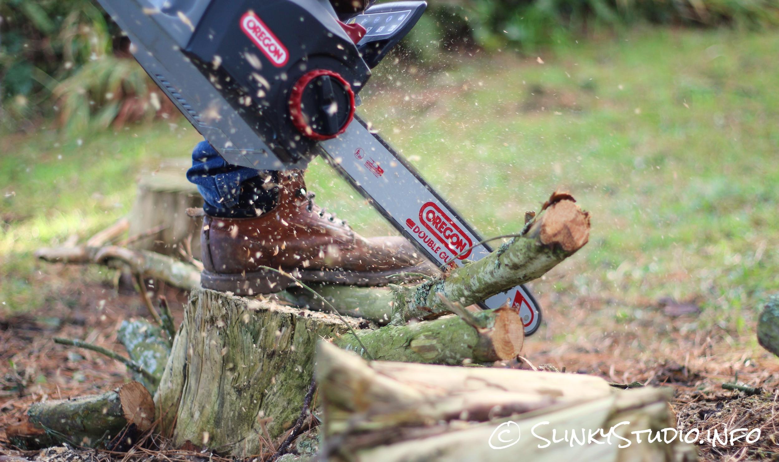 Oregon CS300 PowerNow Cordless Chainsaw Cutting Thin Branch.jpg