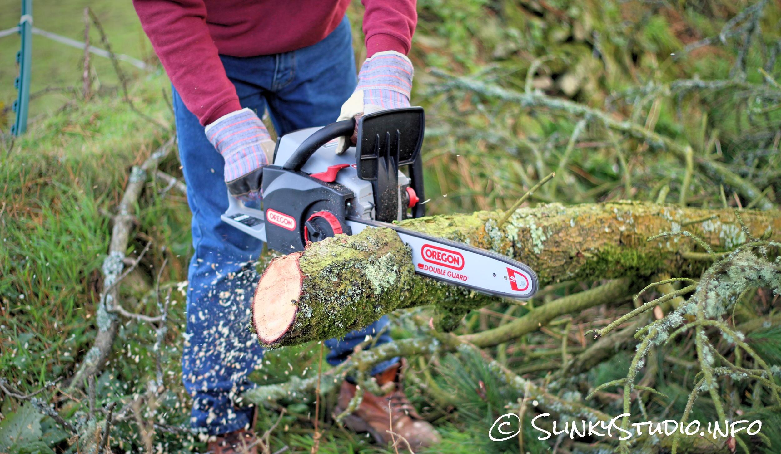 Oregon CS300 PowerNow Cordless Chainsaw Cutting Tight Grain Tree.jpg