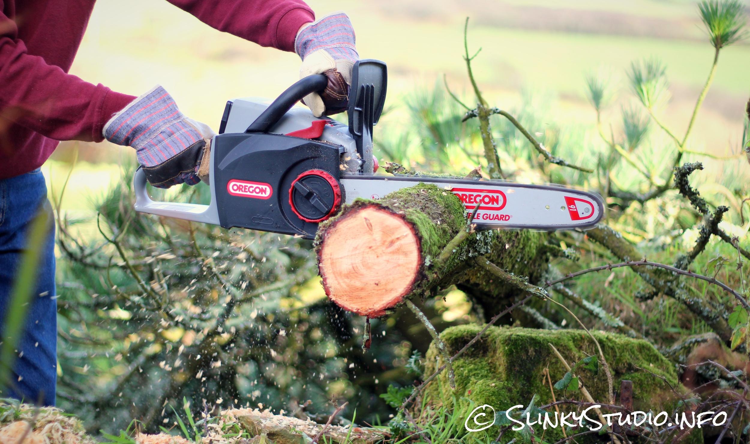 Oregon CS300 PowerNow Cordless Chainsaw Cutting Through Branch Side View Grain.jpg