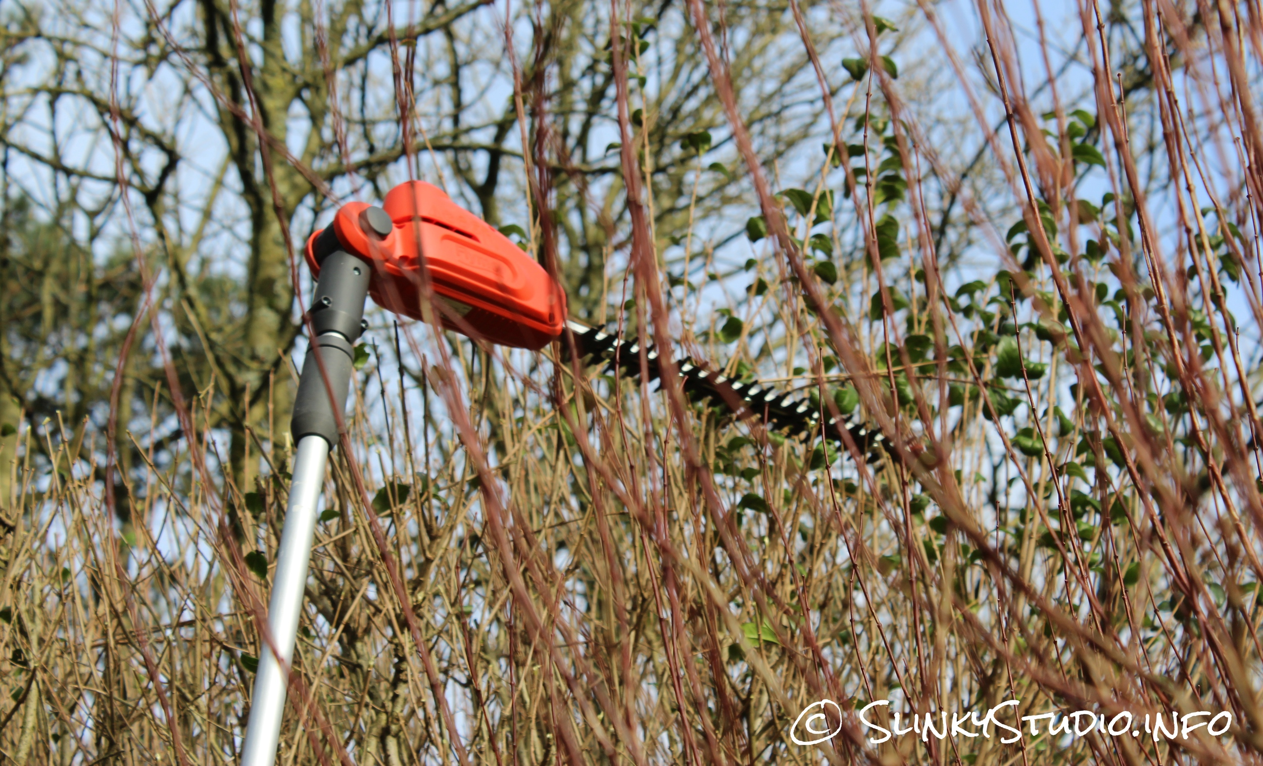 Flymo SabreCut XT Cordless Hedge Trimmer Through Hedge View.jpg