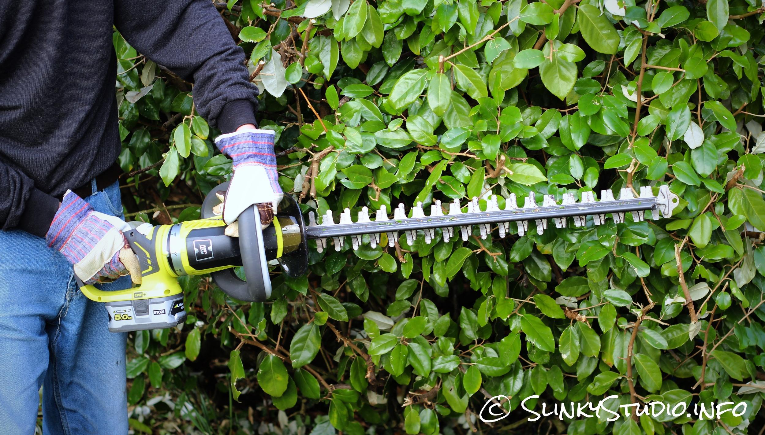 Ryobi One+ Hedge Trimmer Handle Twisted Cutting Hedge Downwards.jpg