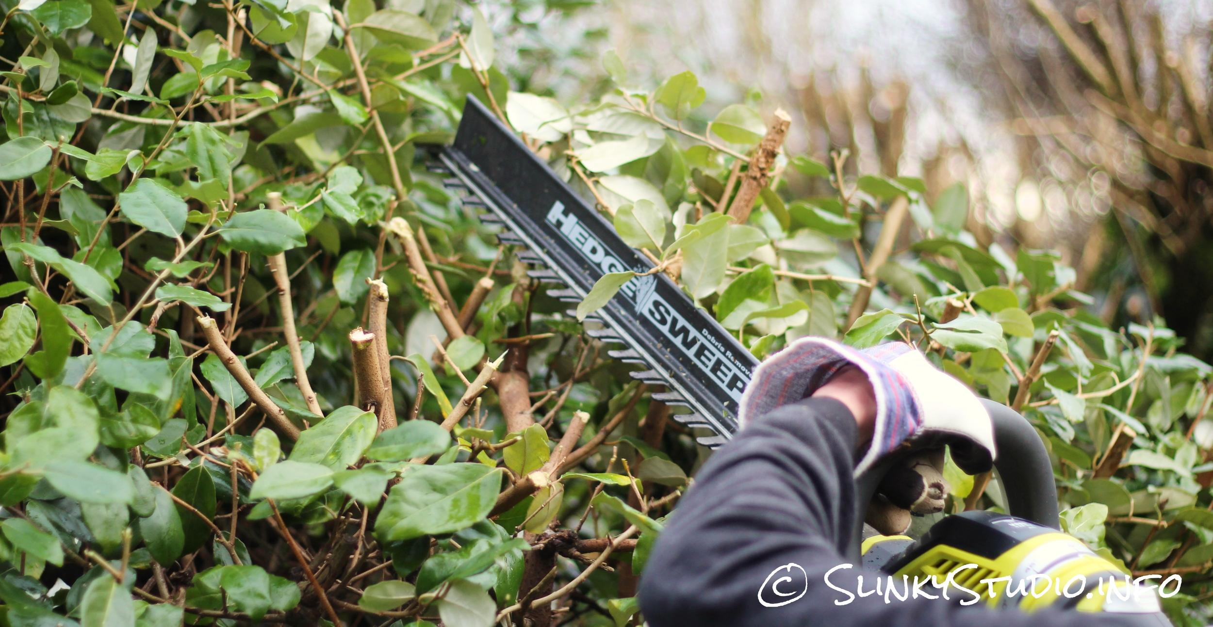 Ryobi One+ Hedge Trimmer Hedge Sweep.jpg