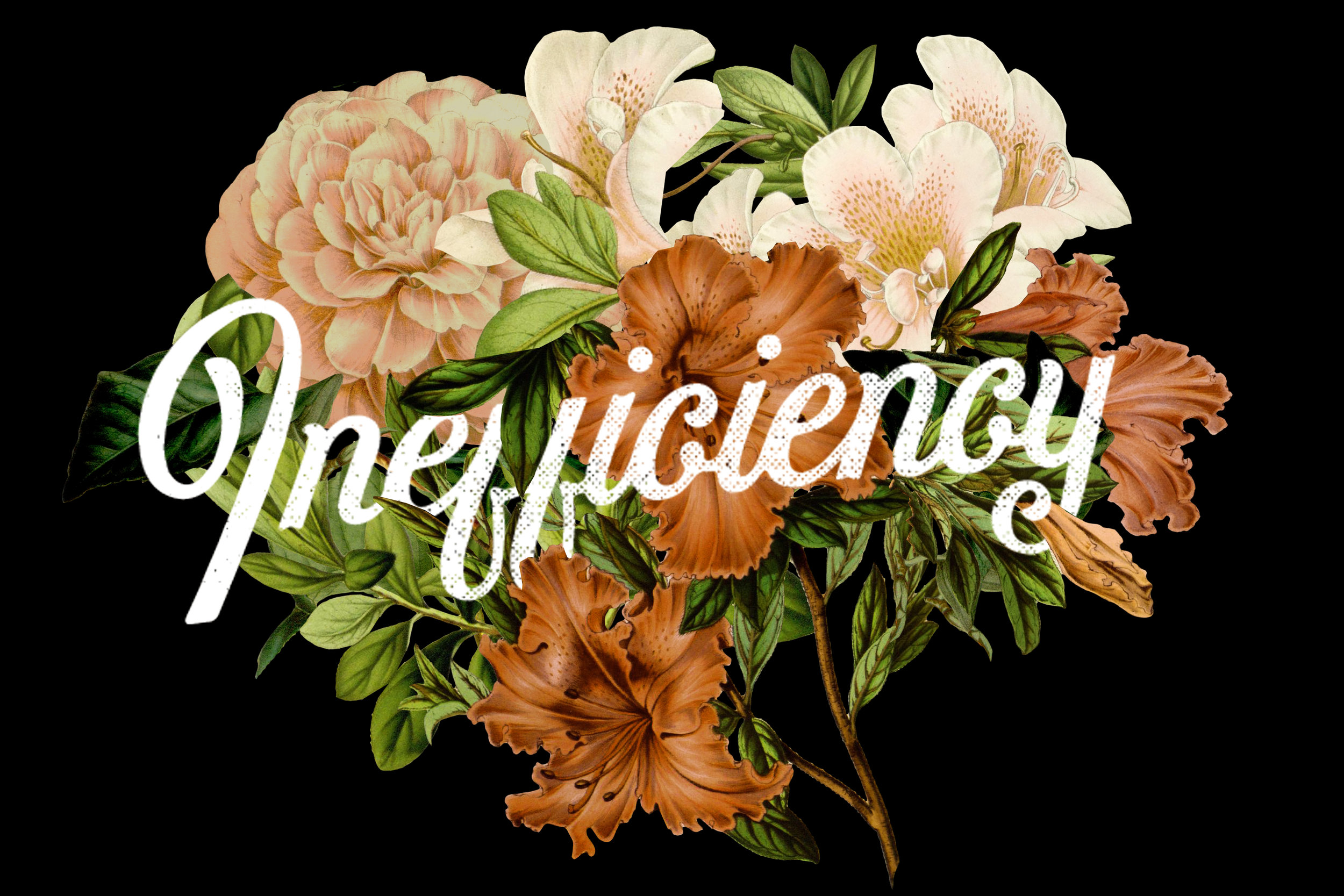 inefficiency: - the massive amount of time, energy and resources that go into deepening awareness, love, relationships, convictions and spirituality.