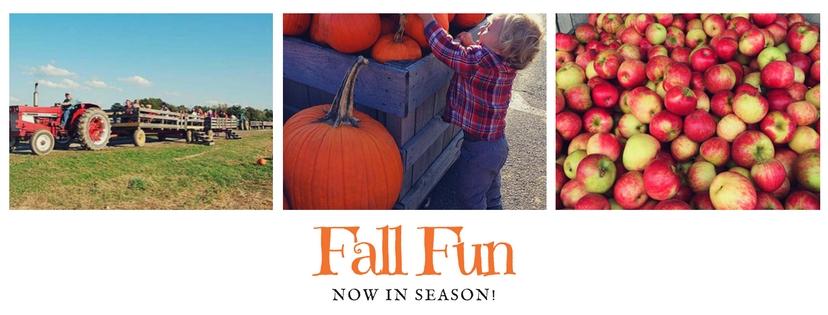 Fall-Fun wagon ride-1.jpg