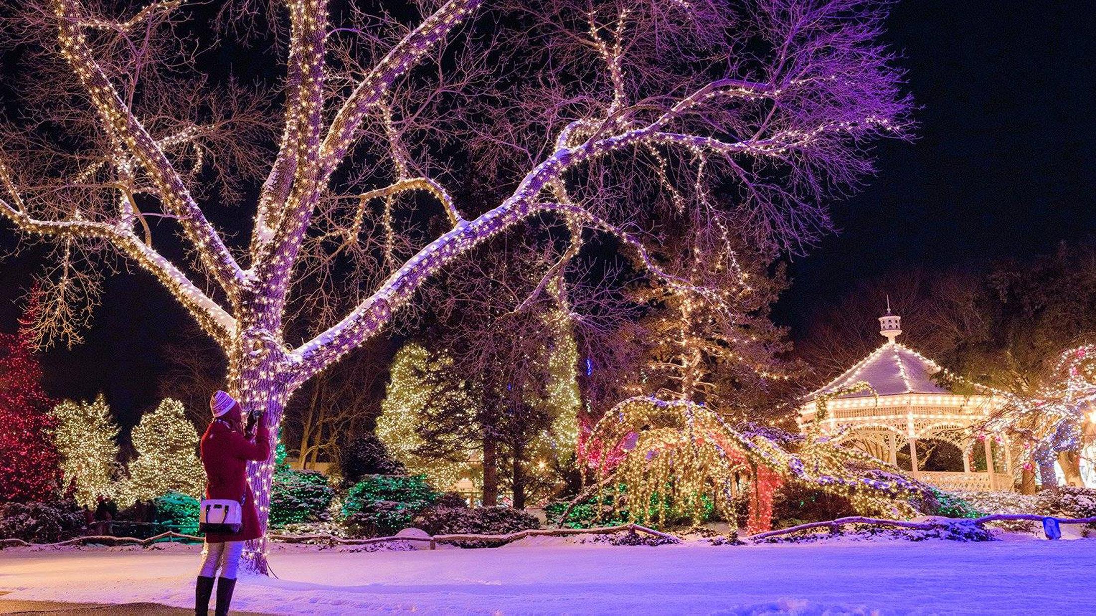 peddlers holiday lights.jpg