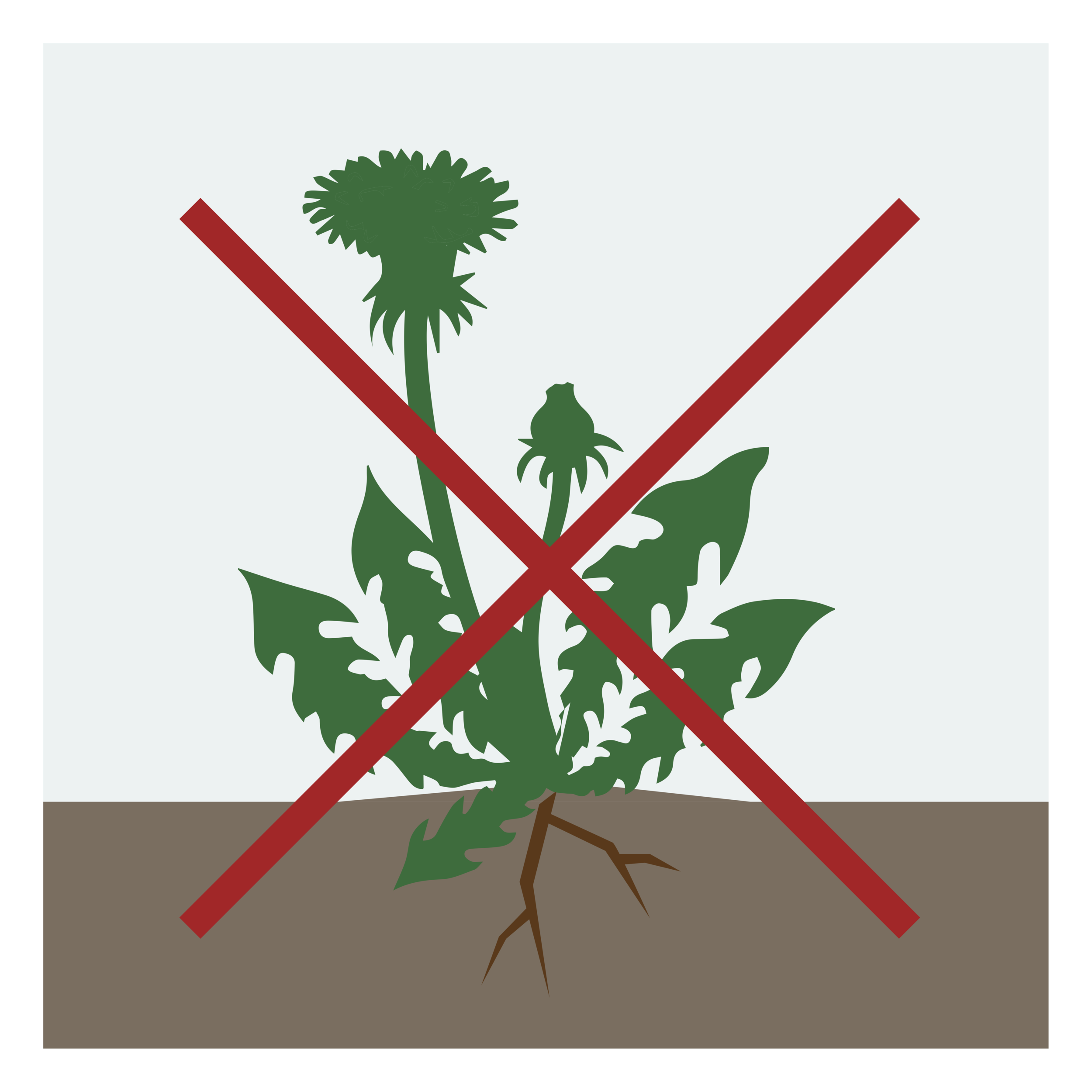 ANTI-MAUVAISES-HERBES.png